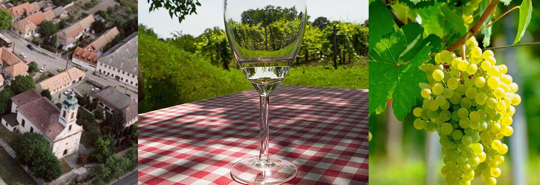 Etyeki borvidék-Budai borvidék-etyeki borok-budai borok