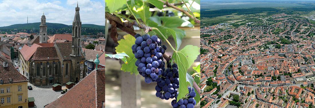 Soproni borok - Soproni borvidék