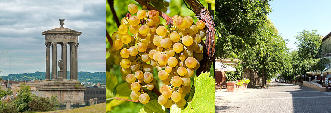 Szekszárdi borok - Szekszárdi Borvidék