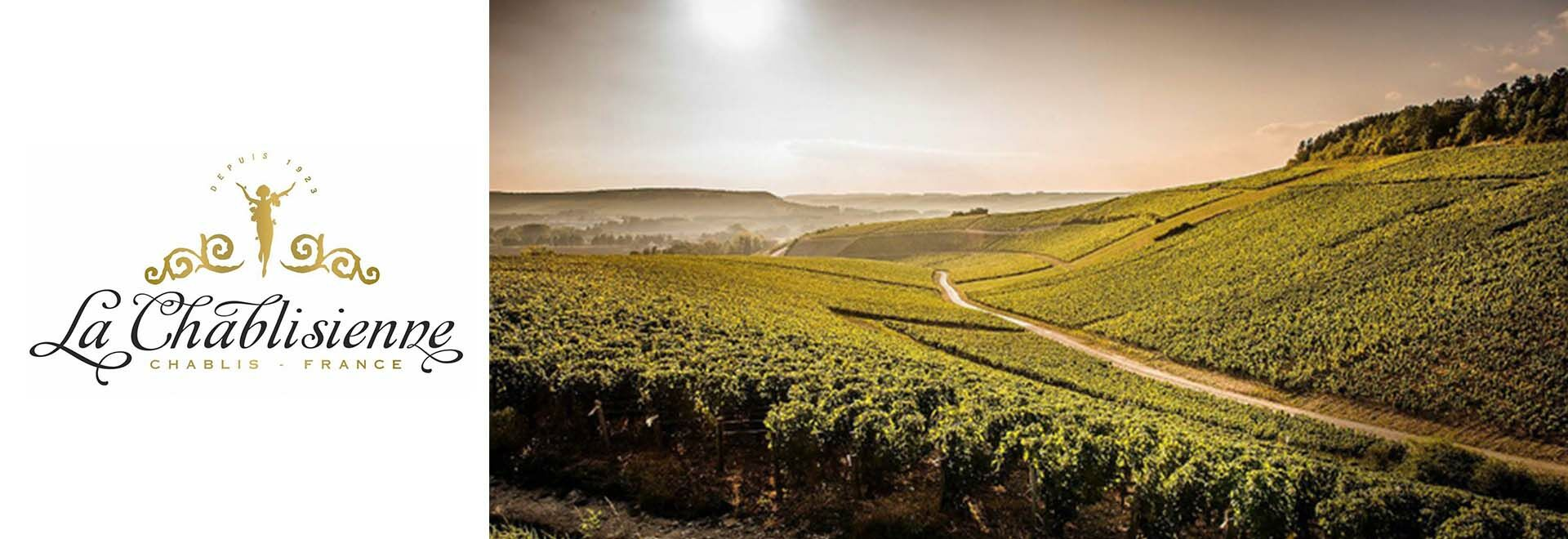 Francia Borok-Chardonnay - Chablis - La Chablisienne Boraszat